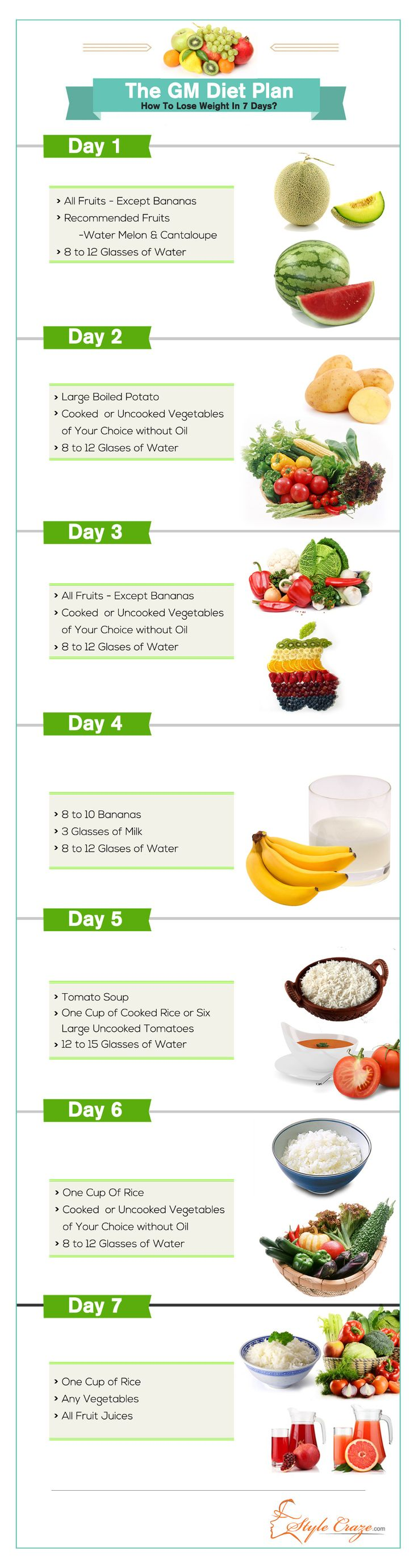 der general motors diet plan dreamteamfitness