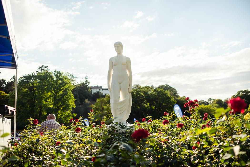 Yogastunde_Stuttgart_Sport_im_Park (36)