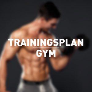 individueller-trainingsplan-gym