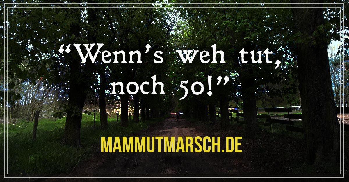 fitnessblog-fitnessblogger-fitness-blog-blogger-stuttgart-dreamteamfitness-mein-mammutmarsch-2017-münchen